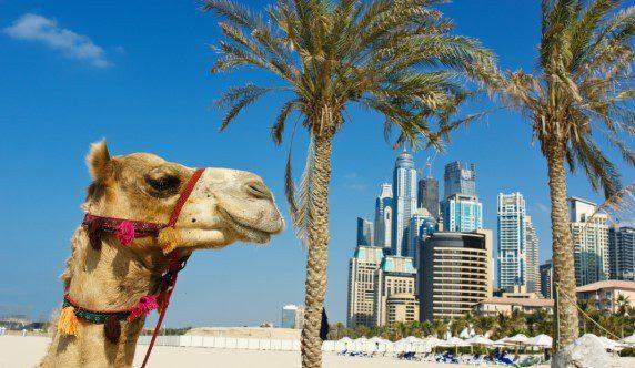 Ielts Exam In Dubai